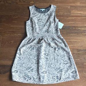 Bbdakota jack - blush lace dress